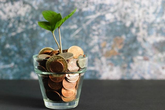 Renewable Money